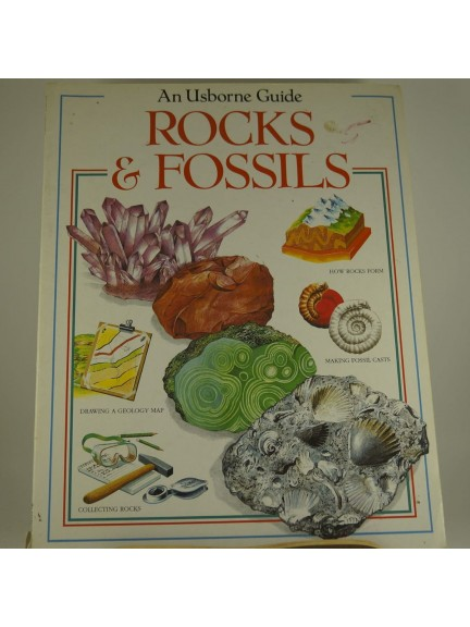 An Usborne Guide: Rocks & Fossils